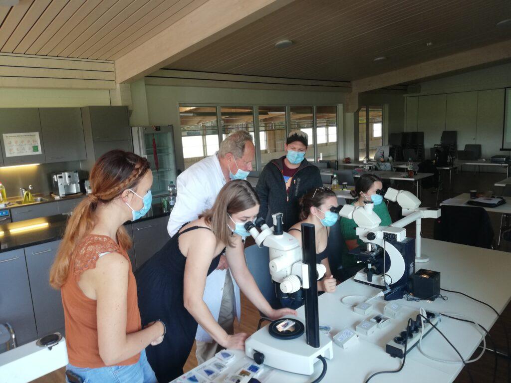 Mikroskopische Anatomie